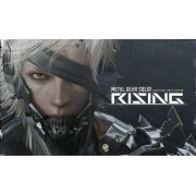Metal Gear Rising: Revengeance (DVD-ROM)